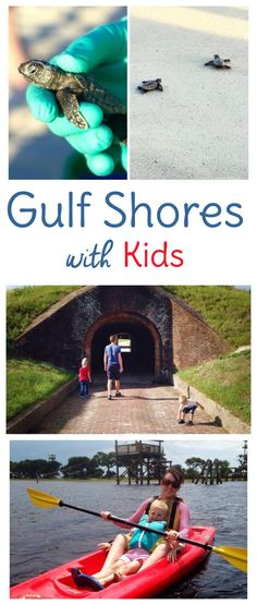 Taking a Gulf Shores Alabama vacation with kids? Here are a few things to do in…