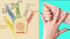 Farklı parmakları ovmanın bazı sağlık sorunlarını çözebileceğini biliyor muydunuz? Alternatif bir sağlık metoduna göre her parmak vücudumuzdaki iki organla bağlantılıdır. Bu metodu uygulayarak bir çok hastalığı tedavi edebiliyorsunuz...