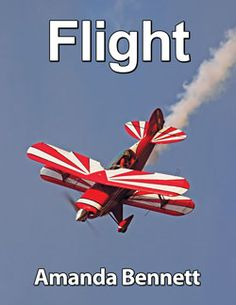 Flight Unit Study - A thrilling 4-week unit study on the history, science, inventors, and pioneers in flight! For grades K-12 - follow the link to learn more!