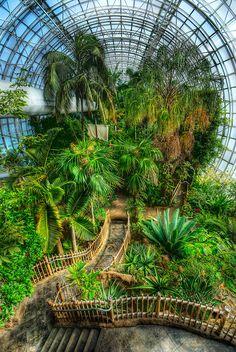 Crystal Bridge Tropical Conservatory / Oklahoma City, OK, USA