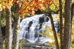 Bond Falls dressed in Autumn colors - Mural de pared y papel tapiz fotográfico - Photowall