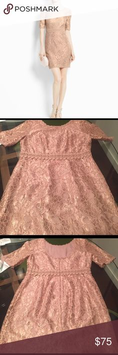 SALE! Ann Taylor Petite Lace dress Ann Taylor Petite Lace dress.  Champagne pink color, excellent condition beautiful dress barely worn.  slight pull on a thread in lace blends in and not noticeable shown in last photo.  Great for cocktail or special event dress codes. Ann Taylor Dresses