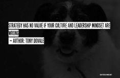 tony dovale - Google Search Leadership, Author, Google Search, Writers