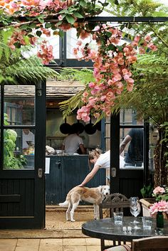A view into the kitchen at Petersham Nursery framed by bougainvillea.