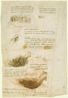 renaissance outline study M he study of english renaissance literature has, of late, been  characterized  by  ideology: an outline theory and sidney's arcadia hlh 52 (1985), 259-77.