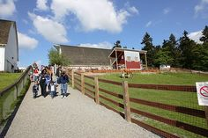Kelsey Creek Farm Park in Bellevue offers many family-friendly activities and special events!