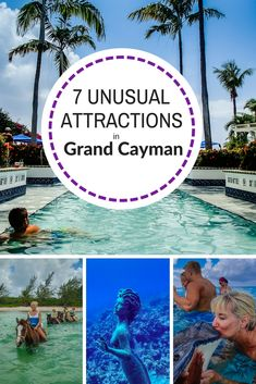 The Cayman Islands have some of the best dive spots in the world, but did you know there were mermaids? This Grand Cayman travel guide features 7 quirky things to do, plus best bet restaurants and accommodations. Cruise Excursions, Cruise Port, Shore Excursions, Grand Cayman Island, Cayman Islands, Caribbean Vacations, Caribbean Cruise, Southern Caribbean, Georgetown Grand Cayman