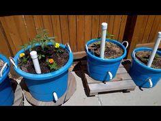 Wicking Pots - YouTube Diy Self Watering Planter, Self Watering Plants, Self Watering Containers, Container Vegetables, Container Gardening, Gardening Tips, Veggies, Wicking Garden Bed, Lake Garden