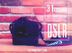 Lily and Light: 31 days of learning to use a DSLR // Day 1, Importing