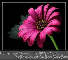 """Motherhood Through the ABC's ~ """"A"""" is for.... - Beautiful Ashes"""
