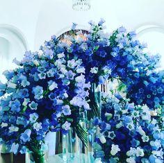 夏にぴったりの爽涼ブルー! アドリアナ・リマ