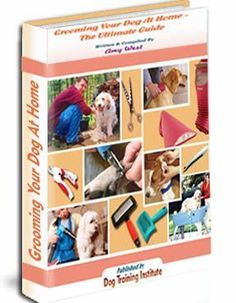 """""""Grooming Your Dog At Home"""" will surely make your neighbors envy you! The Ultimate Dog Grooming Book! Mobile Pet Grooming, Dog Grooming Tools, Dog Breath, Dog Cleaning, Jack Russell Terrier, Training Your Dog, Dog Accessories, Dog Care, Best Dogs"""