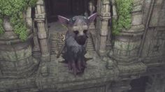 The Last Guardian Video (18 Minutes) https://www.youtube.com/watch?v=uccO2lymQ7k #gamernews #gamer #gaming #games #Xbox #news #PS4