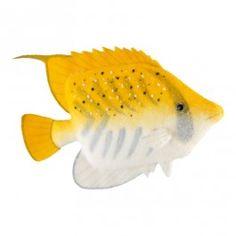 Große Auswahl an reduzierter maritimer Deko: Deko-Fische - von Korallenfisch bis Schwertisch. Tauchen Sie mit bunten Deko-Meeresfisches Ihr Schaufenster in eine tropische Farbenpracht. #MaritimeDeko #Dekoration #DekoFische #Korallenfisch #Schwertfisch #Meeresfisch #Aquarium #Schaufensterdeko #MaritimeIdeen #DekoIdeen #VisualMerchandising #abama #NautischeDeko