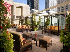 Chicago, IL Once fully relaxed at the Peninsula Chicago's Zen spa, repair downstairs to the Shanghai Terrace where the dumplings and skyline views are divine.—C.O.E. #luxuryzengarden