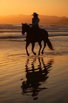 Horseback riding on the beach.. doing this in less than 2 weeks! can't even explain my excitement!