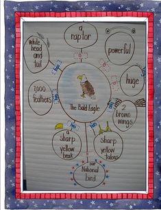 bubble map bald eagle - Inspiration lesson