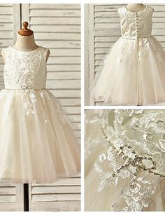 A-line Knee-length Flower Girl Dress - Lace / Tulle Sleeveless - USD $ 59.99