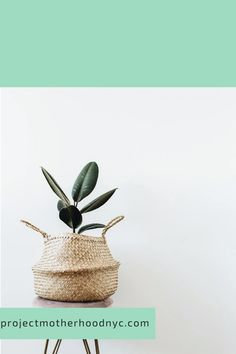 Let's all make a choice to better help the world we live in, okay? These 13 eco friendly products are great swaps for everyday items that won't break the bank. #ecofriendly #healthyliving #healthylifestyle Fabric Softener Sheets, Wool Dryer Balls, Make A Choice, Everyday Items, Brown Bags, Cloth Bags, How To Run Longer, Biodegradable Products, Eco Friendly