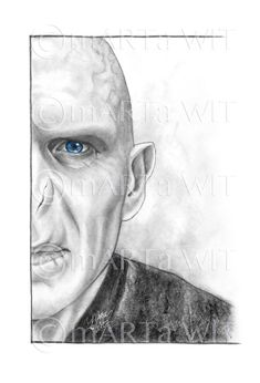 Products - Fan Art Print - Lord Voldemort Keep moving with time - Contemporary home decor Conte All Harry Potter Spells, Harry Potter Sketch, Harry Potter Voldemort, Slytherin Harry Potter, Harry Potter Painting, Harry Potter Artwork, Harry Potter Drawings, Lord Voldemort, Hery Potter