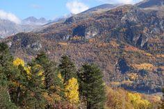 Últimos colores del otoño en el valle de Tena