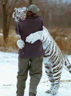man-hugging-tiger