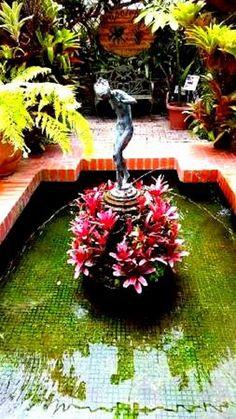 Jardines Ecológicos Topotepuy Fuente del invernadero. Caracas, Venezuela