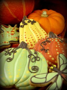 Pumpkins and gourds | Cookie Connection