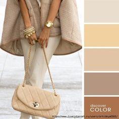 Protocollum. Escuela de Etiqueta Personalizada : La combinación de colores en prendas de vestir
