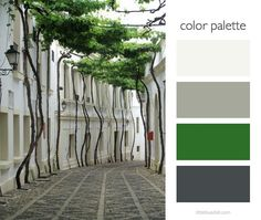 color palette - green and gray