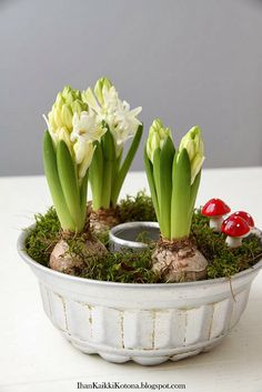 - Easter decoration garden concrete- – Ostern Dekoration Garten Beton Things to consider a beautiful garden … - Indoor Planters, Flower Planters, Flower Pots, Indoor Gardening, Flower Pot Design, Spring Garden, Easter Garden, Decoration Table, Gardening For Beginners
