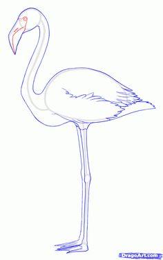 Flamingo step by step
