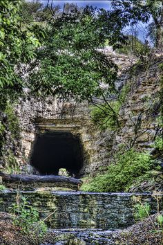 Abandoned train tunnel near San Antonio filled with bats| Texas Hill Country