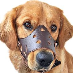Pet Touch Dog Safety with Adjustable Loop and Soft Pad Puppy Muzzle Breathable Mesh