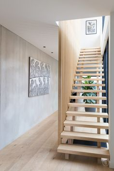 S&A Stairs · Bluff Avenue