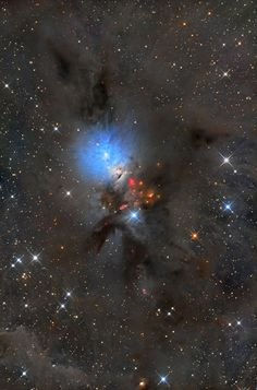 NGC1333 is seen in visible light as a reflection nebula…