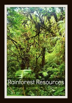 Rainforest Resources for Kids: characteristics, geography, vocabulary… Geography For Kids, World Geography, Learning A Second Language, Learning Spanish, Kids Around The World, Around The Worlds, Animal Science, Science Fun, Fiction And Nonfiction