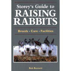 Guide to Raising Rabits- rabbits!
