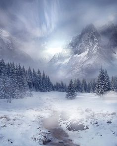 it's starting to look like winter up here. Just a perfect picture Winter Photography, Landscape Photography, Nature Photography, Winter Schnee, Winter Magic, Winter Snow, All Nature, Snow Scenes, Winter Beauty