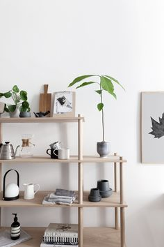 Woud Elevate shelving in our kitchen - COCO LAPINE DESIGNCOCO LAPINE DESIGN