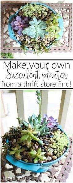 Get your hands dirty and make your own upcycled succulent planter with any ordinary thrift store pot, some spray paint and a little creativity.