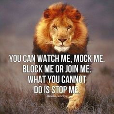 30 Of The Best Lion Quotes In Pictures - Motivational Quotes Of Courage & Strength Motivational Quotes For Success, Positive Quotes, Inspirational Quotes About Family, Fat Positive, Motivational Posters, Leadership Quotes, Strong Quotes, Inspirational Thoughts, Wisdom Quotes