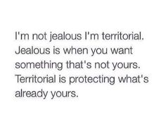 I'm not jealous I'm territorial. Jealous is when you want something that's not yours. Territorial is protecting what's already yours. The Words, Couple Quotes, Me Quotes, Random Quotes, Daddy Quotes, Romance Quotes, Reminder Quotes, Story Quotes, Boss Quotes