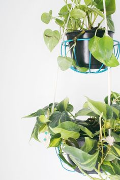 Hanging Planters You Can Make Yourself – DIY Hanging Wire Planter by A Joyful Riot
