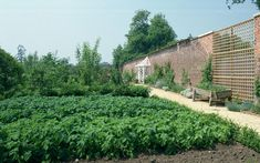 Highgrove, Gloucestershire: The walled garden at the Prince of Wales's home was the idea of his friend Dowager Lady Salisbury, and includes many rare and endangered varieties of fruit and vegetable.