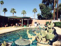 Phoenix, AZ — Picnic