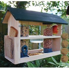 bird feeding station - as bought for me by Joyce  :)