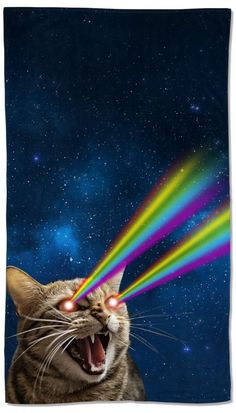 Cats With Cucumbers Product Animals And Pets, Funny Animals, Cute Animals, Cute Cats, Funny Cats, Trippy Cat, Cat Laser, New Retro Wave, Galaxy Cat