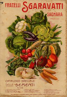 Una storica copertina del #catalogo dei fratelli #Sgaravatti dove è raffigurato anche il #pomodoro Re Umberto, e dove viene definito un must.