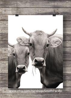 cow art decor - Cow art print Printable art Cow face Sepia Cow photo Printable wall art Farm Cow decor printable animals decor jersey cows black and white Cow Photos, Cow Pictures, Printable Animals, Printable Wall Art, Cow Decor, Cow Face, Cute Cows, Animal Decor, Farm Animals